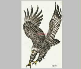 Eagle Bird embroidery pattern album