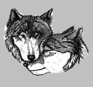 狼两只 乱针绣精品