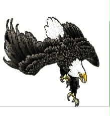 鹰 大展宏图工艺精品 鸟