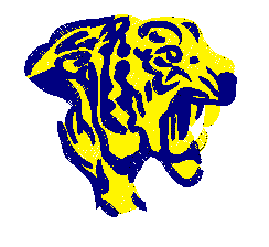 Tiger head embroidery pattern album