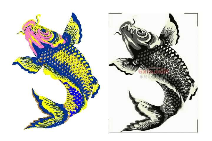 鲤鱼 中国风绣花版带图片